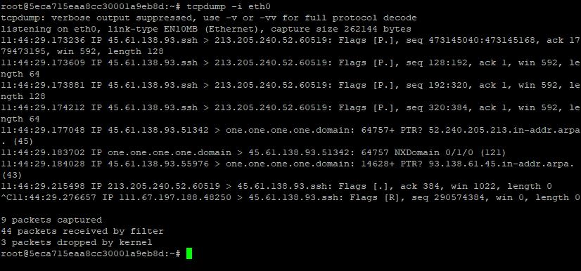 TCPdump readout